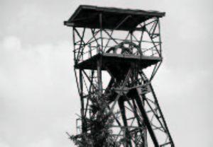 bvd-flyer-aktuell-06-03_2_0007